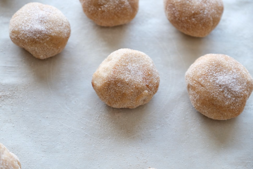 Sugar cookie balls rolled in cinnamon sugar before being put in the oven