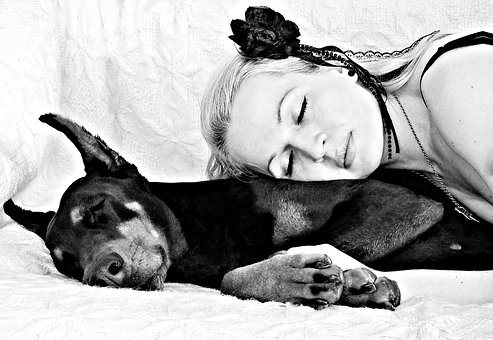 Did You Know That Women Prefer to Sleep With Their Dogs?