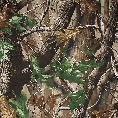 Realtree Hardwoods Green Hd Licensed Bandana 22x22 Inch